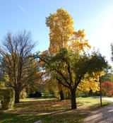 Bad Bevensen, Lüneburger Heide, Parkhotel, Urlaub mit Freundinnen,Therme Lünebuerg Heid, Jod-Sole Therme, Herbst, Krimi